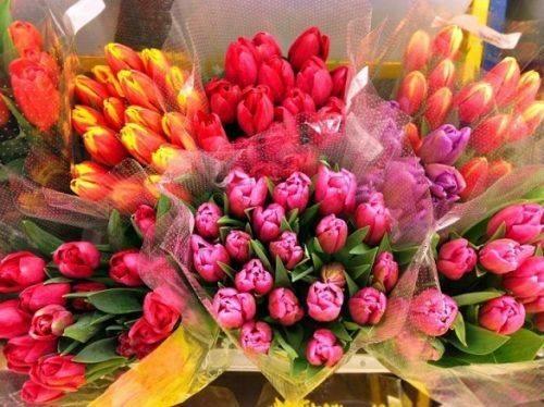 У центрі Черкас дозволили продавати квіти до 8 березня