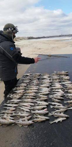 На Черкащині браконьєри завдали збитків майже на 75 тисяч гривень (фото)