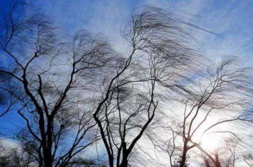 Жовтий рівень загрози: черкасців попереджають про погіршення погодних умов