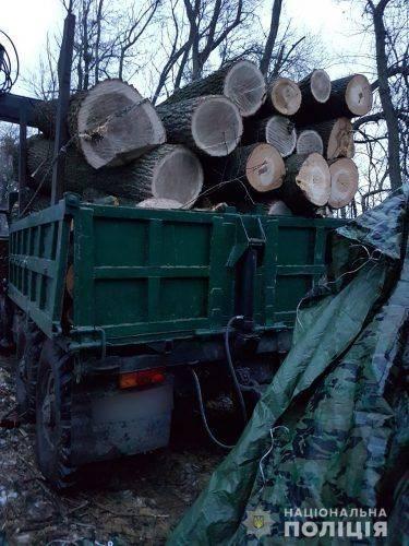 На Черкащині припинили незаконну вирубку лісу (фото)