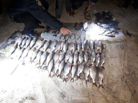 На Черкащині браконьєри наловили риби на понад 11 тис. грн