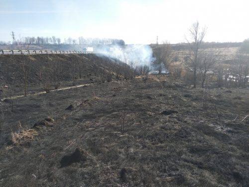 У Черкасах ліквідували пожежу на площі один гектар (фото, відео)
