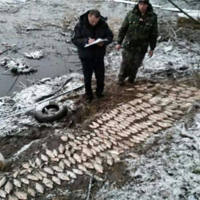 На Черкащині затримали браконьєрів, які виловили риби на понад 25 тис. грн (фото)