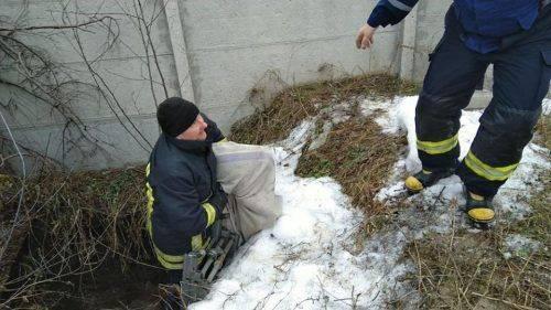 На Черкащині рятувальники витягли з колодязя хаскі (фото)