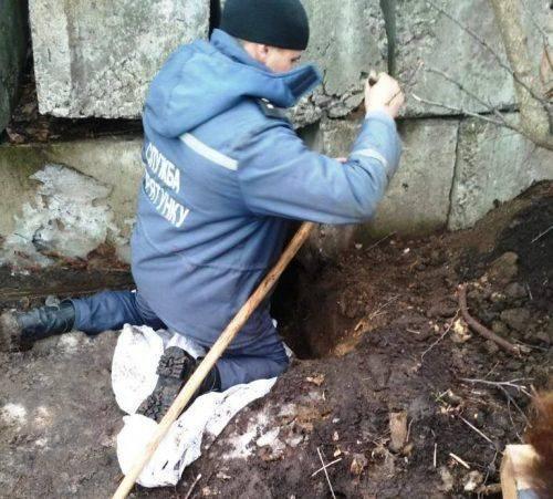 На Черкащині врятували з-під бетону вісім цуценят (фото)