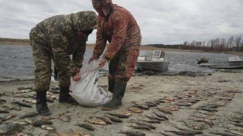На Черкащині браконьєри завдали збитків на понад 45 тисяч гривень (фото)