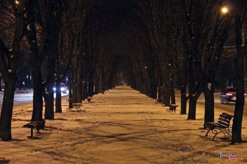 Черкасці просять створити паркан вздовж бульвару Шевченка