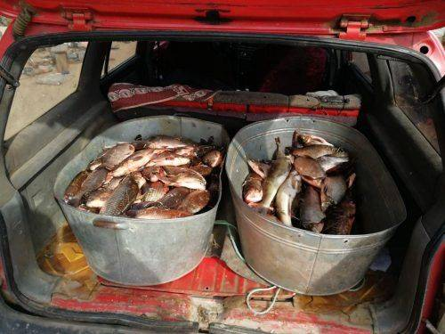 Черкащанин наловив риби майже на 80 кілограмів (фото)