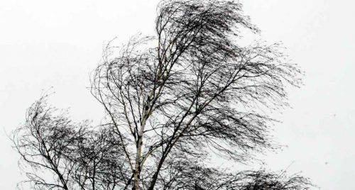 Жовтий рівень загрози: черкащан попереджають про погіршення погодних умов