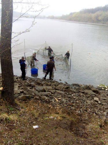 На Черкащині браконьєри наловили риби майже на 130 тис. грн