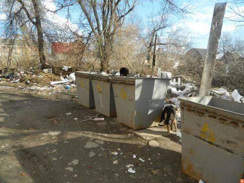 Безхатько на Черкащині знайшов на смітнику пакунок, а в ньому – 80 тисяч гривень