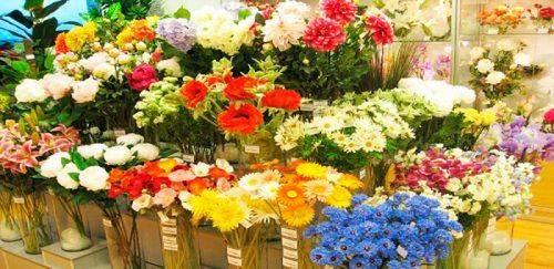 У Черкасах хочуть облаштувати «Квітковий» сквер