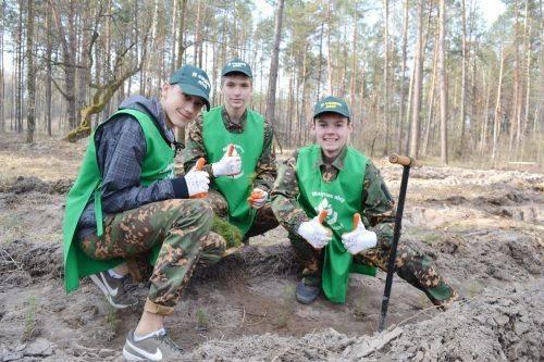 На Черкащині висадили ліс на честь учасників АТО (фото)