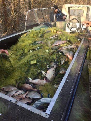 Правоохоронці у Сулинському заказнику незаконно ловили рибу (фото, відео)