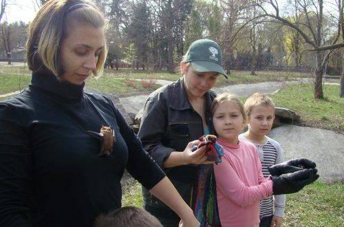 Волонтери та працівники черкаського зоопарку випустили врятованих кажанів (фото)