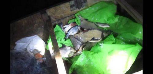 На Черкащині затримали браконьєра, який ловив рибу на дерев'яному човні (фото, відео)