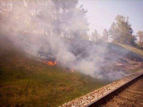 Військовий полігон у Черкасах вже декілька днів поспіль горить (фото)
