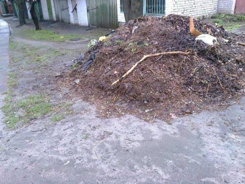 У Черкасах ліквідували майже 50 стихійних сміттєзвалищ (фото)