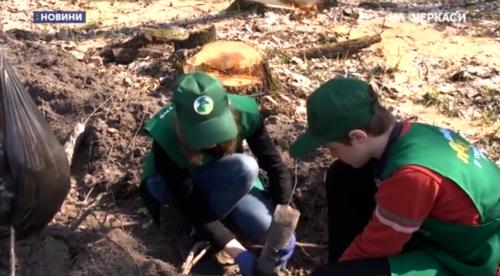 Школярі з Черкащини висаджують ліс (відео)