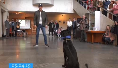 Нізащо тебе не кину: у Черкасах відбулася унікальна фотовиставка з домашніми улюбленцями (відео)
