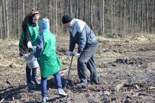 На честь загиблого учасника АТО на Черкащині висадили пам'ятний дубовий ліс