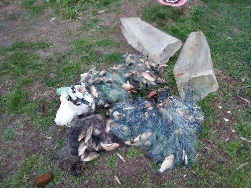 На Черкащині браконьєри незаконно виловлювали рибу (фото)