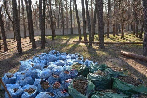 Екологічний квітень: як черкащани визволяли зі сміттєвого полону міста і села області (фото)