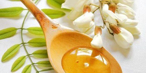На Черкащині почали збирати акацієвий мед