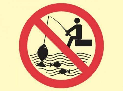 На Черкащині створили групу боротьби з незаконним рибальством