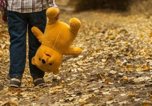 Був у лісосмузі й плакав: майже добу шукали 4-річного хлопчика на Черкащині