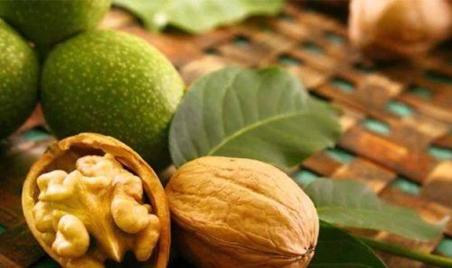 На Черкащині встановили рекорд з вирощування горіхів