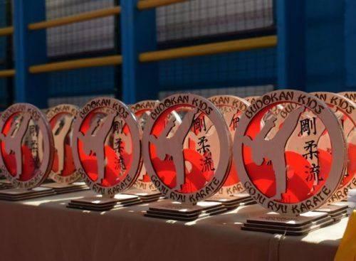 У Черкасах вперше відбувся чемпіонат міста з годзю-рю карате серед дітей