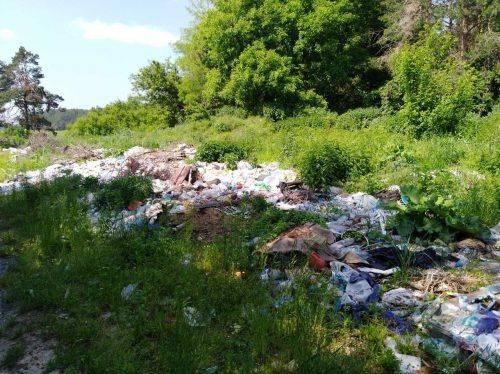 На Черкащині утворилося стихійне сміттєзвалище: голова сільради відповідатиме (фото)