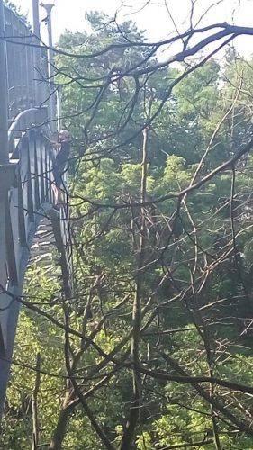 Черкащанин намагався покінчити життя самогубством на Мосту кохання (фото)