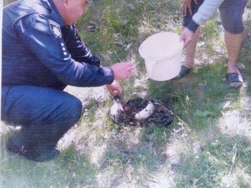 На Черкащині затримали браконьєрів, які ловили рибу саморобними знаряддями лову (фото)