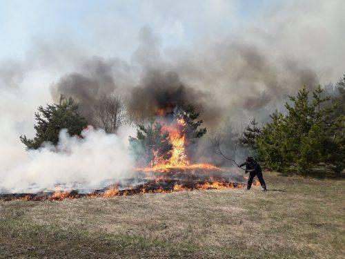 На Черкащині оголосили п'ятий клас пожежної небезпеки