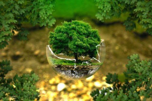 На Черкащині розпочали понад 80 екооцінювань впливу на довкілля