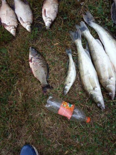 На Черкащині небайдужі затримали браконьєрів (фото)