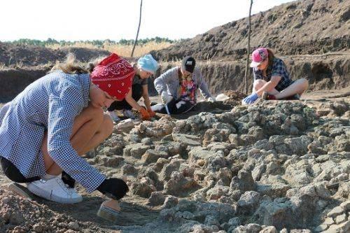Археологи на Черкащині знайшли трипільський посуд, якому майже 6 тисяч років (фото)