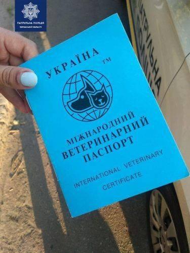 Черкащанин купив собаку з підробленими документами