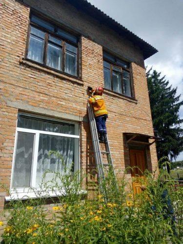У стінах школи на Черкащині оселилися рої диких бджіл (фото)