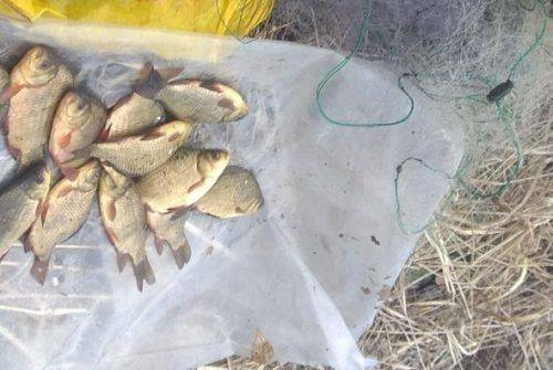 На Черкащині браконьєри завдали збитків майже на два мільйони гривень