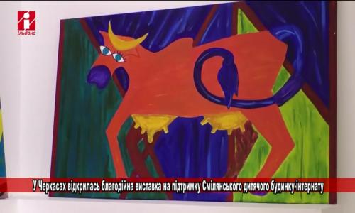 У Черкасах відкрилась благодійна виставка на підтримку дитячого будинку-інтернату (відео)