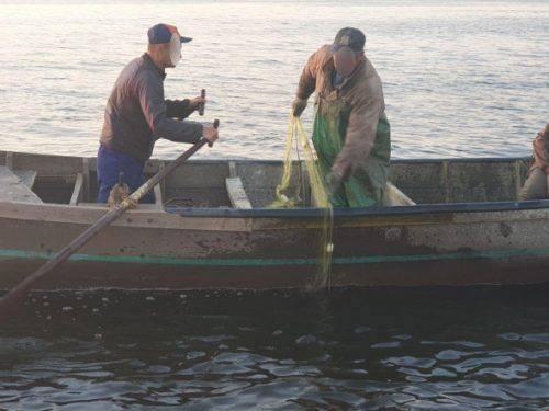 У Черкасах браконьєр наловив риби майже на 190 тис. грн