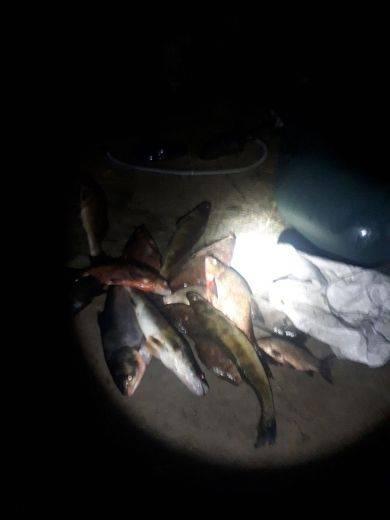 На Черкащині барконьєри незаконно ловили рибу з гумового човна (фото)