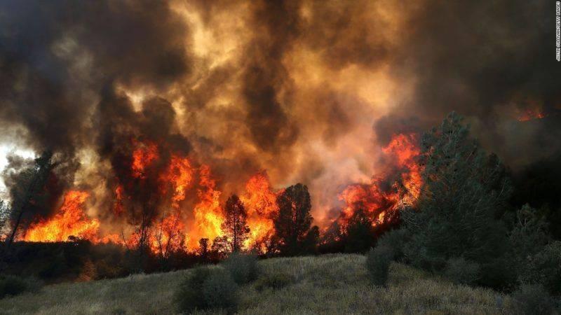 Не панікуйте та остерігайтеся: високої температури, задимленості та загазованості, обвалу конструкцій будинків і споруд, вибухів технологічного обладнання і приладів, падіння обгорілих дерев і провалів. Знайте де знаходяться засоби пожежегасіння та вмійте ними користуватися.