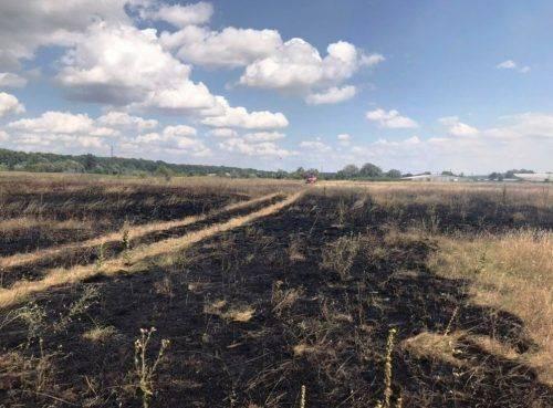 За добу в Черкасах та області чотири горіла суха трава (фото)