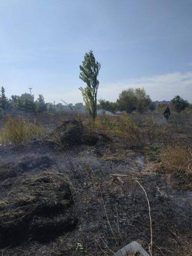 У Черкасах відбулася пожежа трави на площі майже 2 гектари (фото)