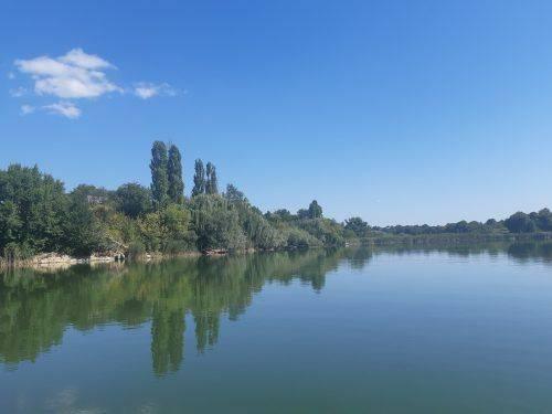 Черкаські екологи розповіли про стан річки Рось (фото)