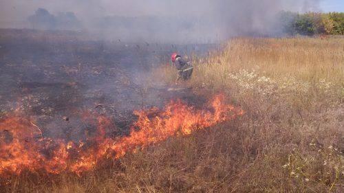 На Черкащині виникла пожежа сухої трави (фото)